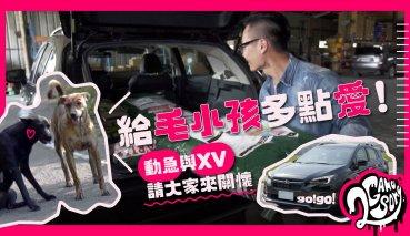 給毛小孩多點愛!台灣動物緊急救援小組 與 Subaru XV GT Edition 一起來關懷