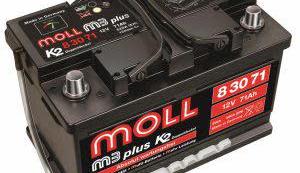 德國MOLL電池 硬是比較強