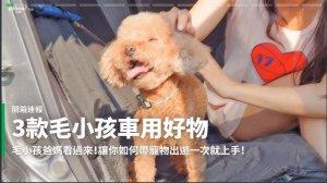 【開箱速報】貓狗上車大作戰!3款毛小孩車用好物不亂跑開箱!