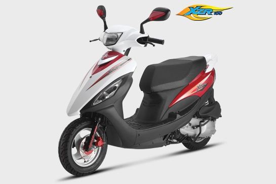 2009 Suzuki XZR 100
