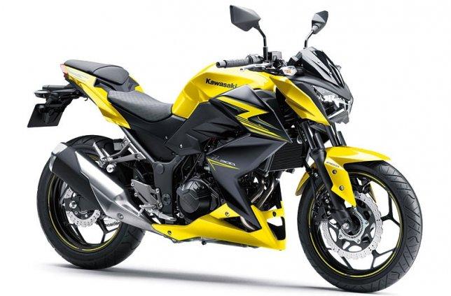2016 Kawasaki Z 300 ABS