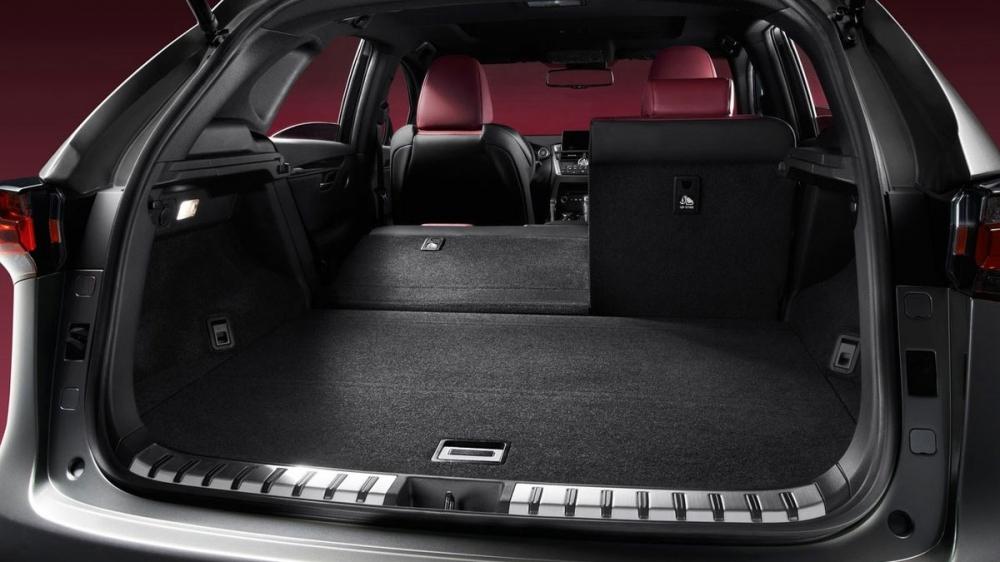 Lexus_NX_300h F Sport版